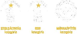 Az Év honlapaj - Különdíj 2018 | Marketing Diamon Awwards 2018